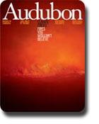 audubon-flannery